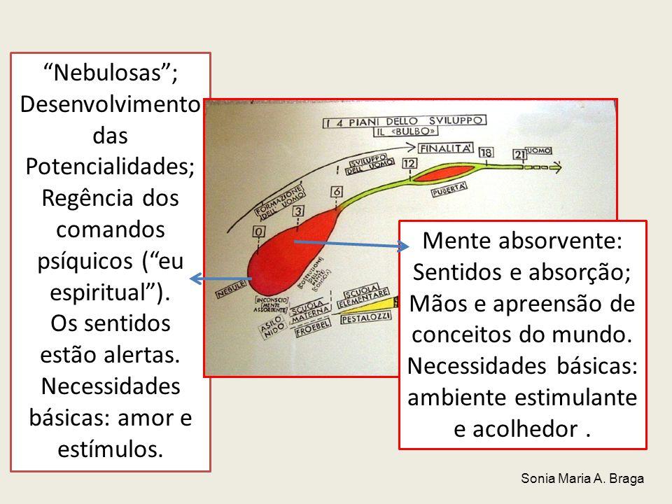 Desenvolvimento das Potencialidades;