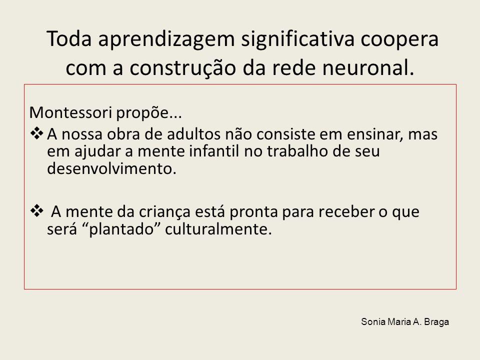 Toda aprendizagem significativa coopera com a construção da rede neuronal.