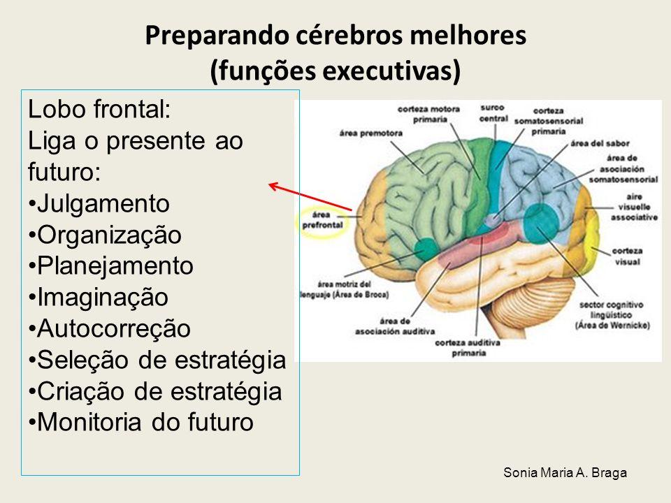 Preparando cérebros melhores (funções executivas)