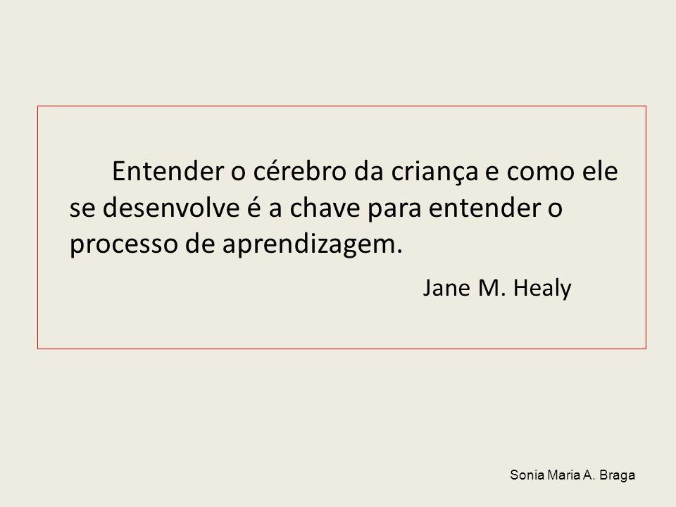 Entender o cérebro da criança e como ele se desenvolve é a chave para entender o processo de aprendizagem. Jane M. Healy