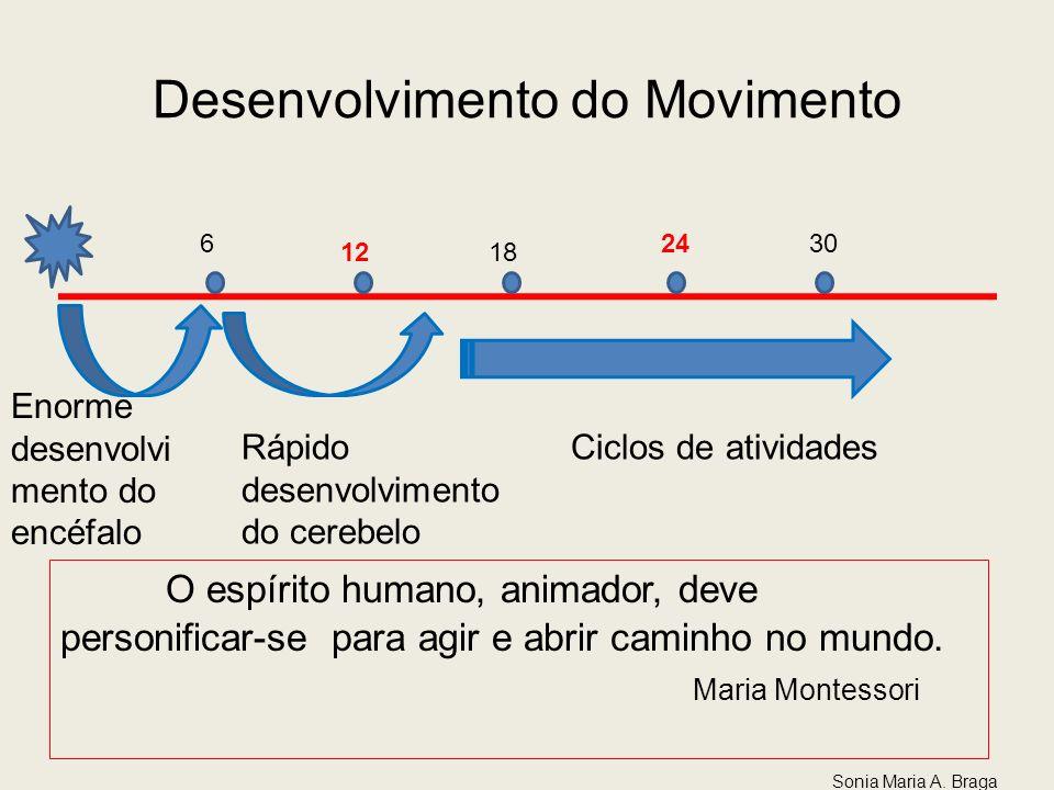 Desenvolvimento do Movimento