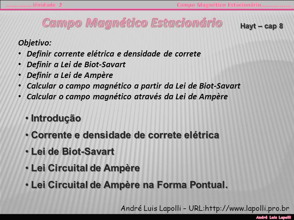 Campo Magnético Estacionário
