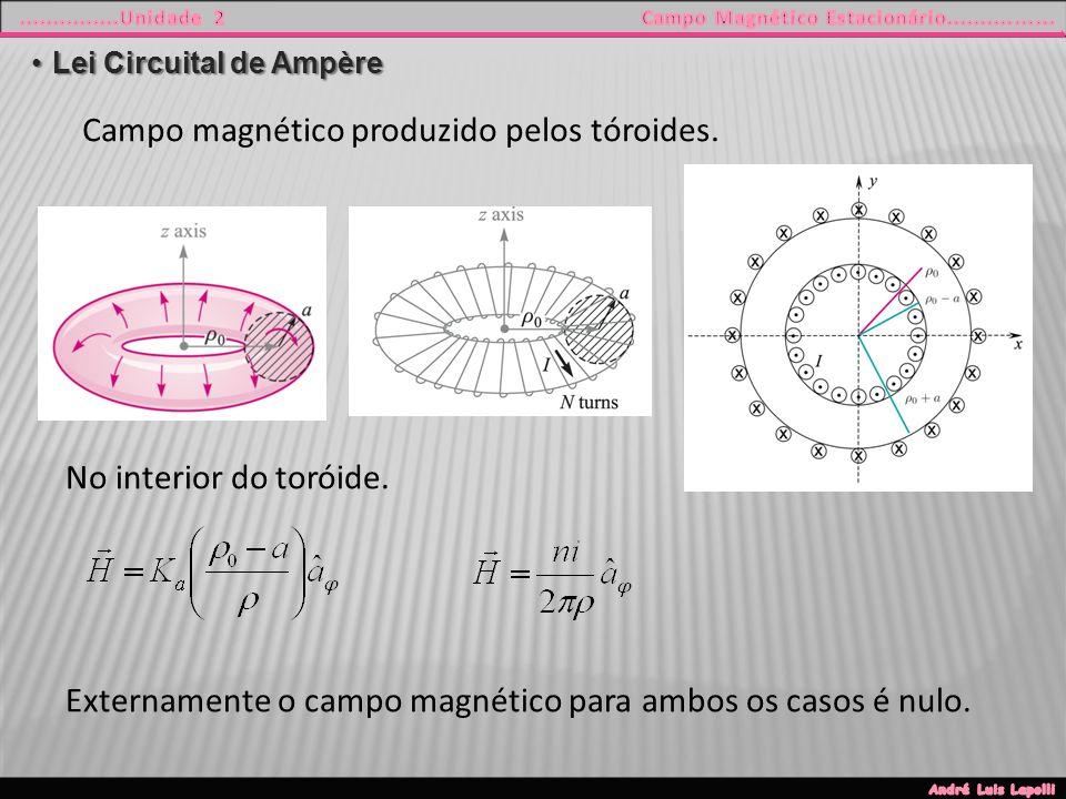 Campo magnético produzido pelos tóroides.