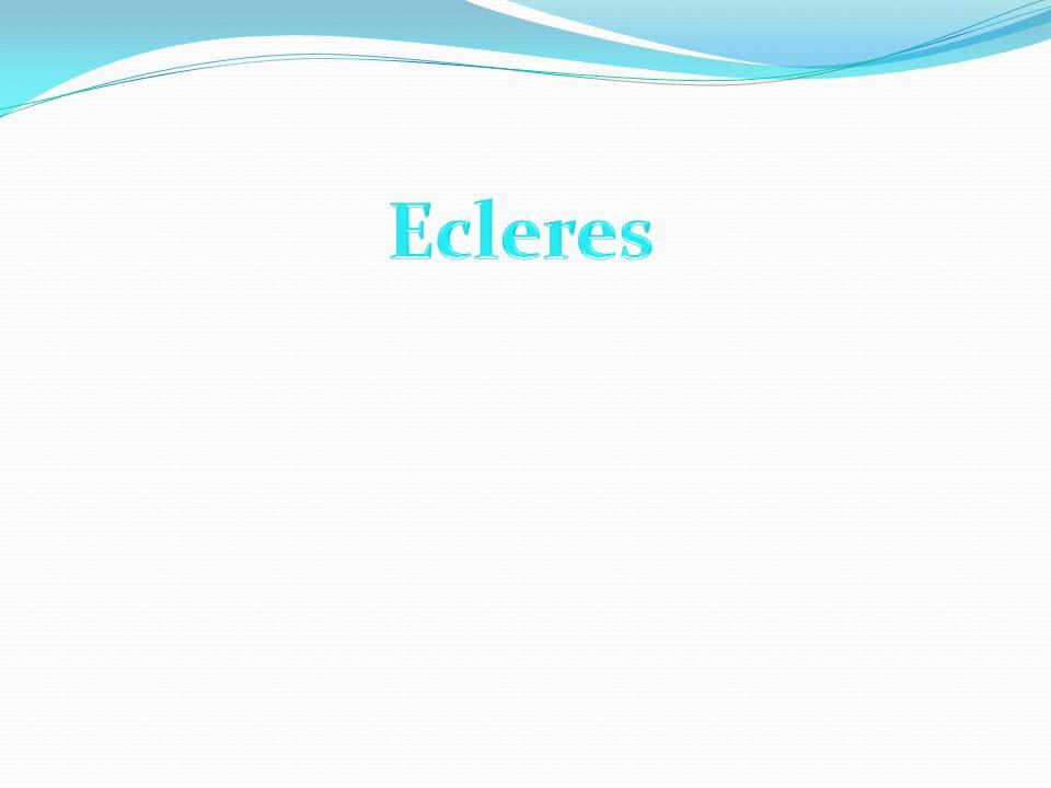 Ecleres