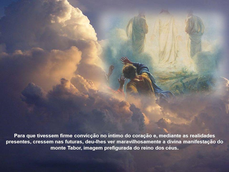 Para que tivessem firme convicção no íntimo do coração e, mediante as realidades presentes, cressem nas futuras, deu-lhes ver maravilhosamente a divina manifestação do monte Tabor, imagem prefigurada do reino dos céus.