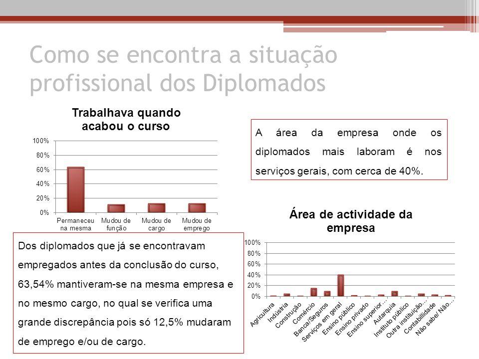 Como se encontra a situação profissional dos Diplomados