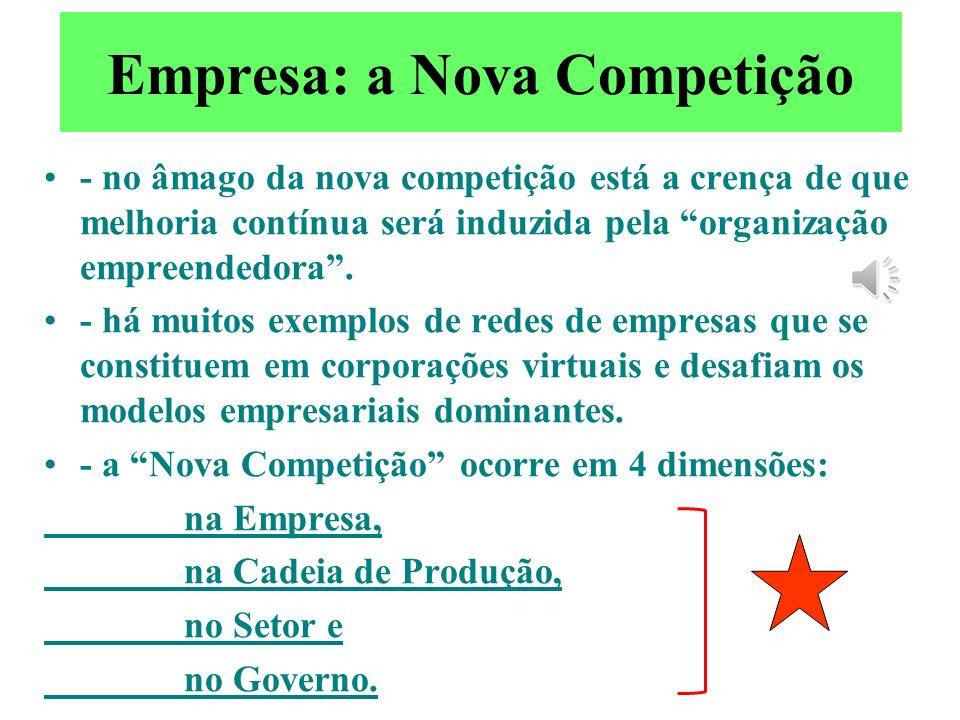 Empresa: a Nova Competição