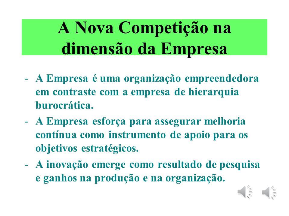 A Nova Competição na dimensão da Empresa