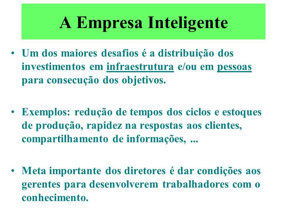 A Empresa Inteligente Um dos maiores desafios é a distribuição dos investimentos em infraestrutura e/ou em pessoas para consecução dos objetivos.