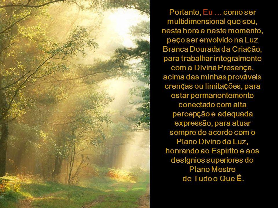 Portanto, Eu ... como ser multidimensional que sou, nesta hora e neste momento, peço ser envolvido na Luz Branca Dourada da Criação, para trabalhar integralmente com a Divina Presença, acima das minhas prováveis crenças ou limitações, para estar permanentemente conectado com alta percepção e adequada expressão, para atuar sempre de acordo com o Plano Divino da Luz, honrando ao Espírito e aos desígnios superiores do Plano Mestre