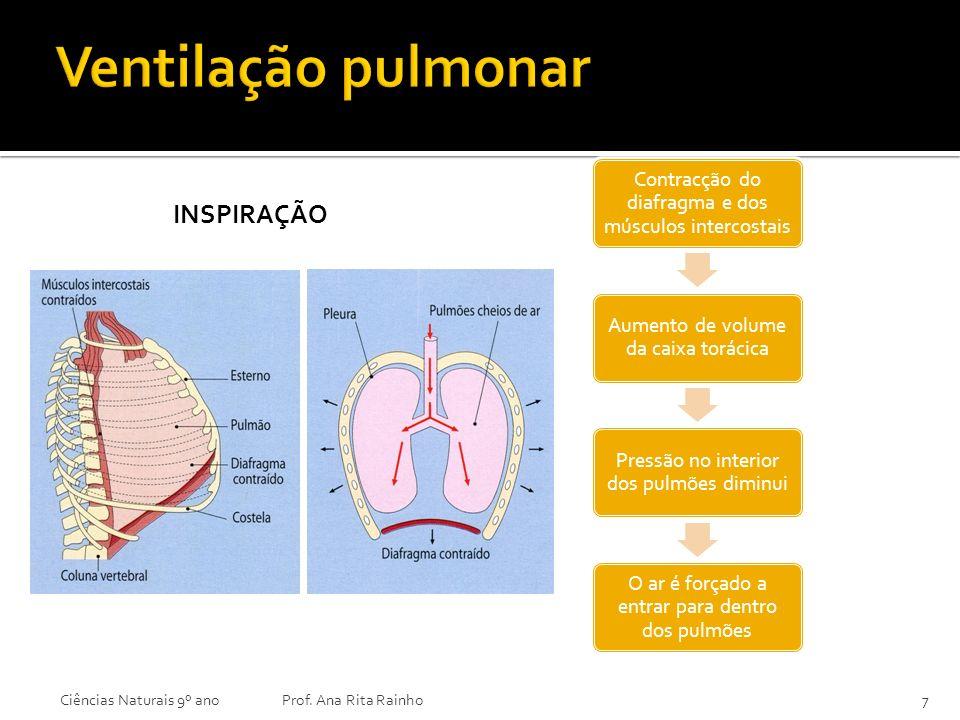 Ventilação pulmonar Inspiração Ciências Naturais 9º ano