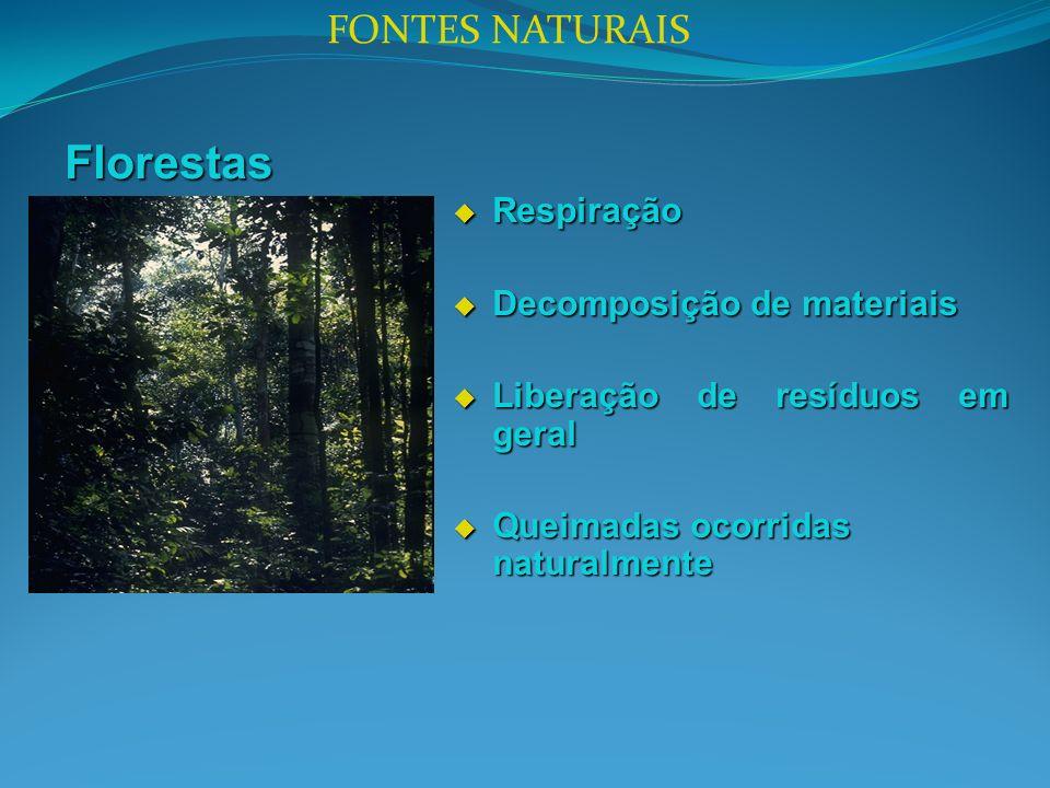 Florestas FONTES NATURAIS Respiração Decomposição de materiais