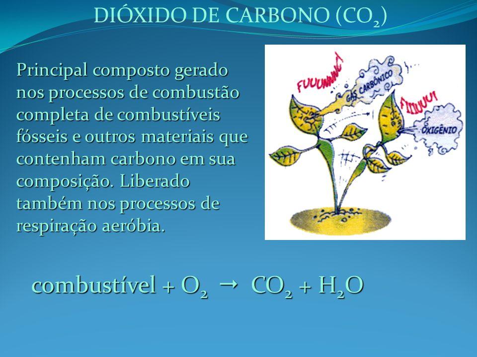 combustível + O2  CO2 + H2O DIÓXIDO DE CARBONO (CO2)
