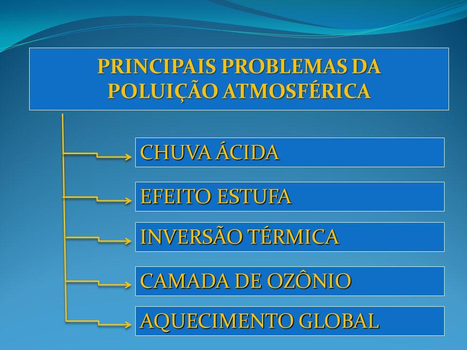 PRINCIPAIS PROBLEMAS DA