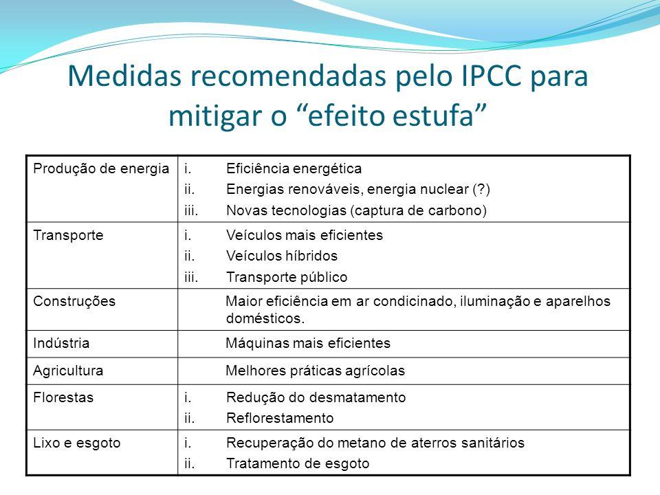 Medidas recomendadas pelo IPCC para mitigar o efeito estufa