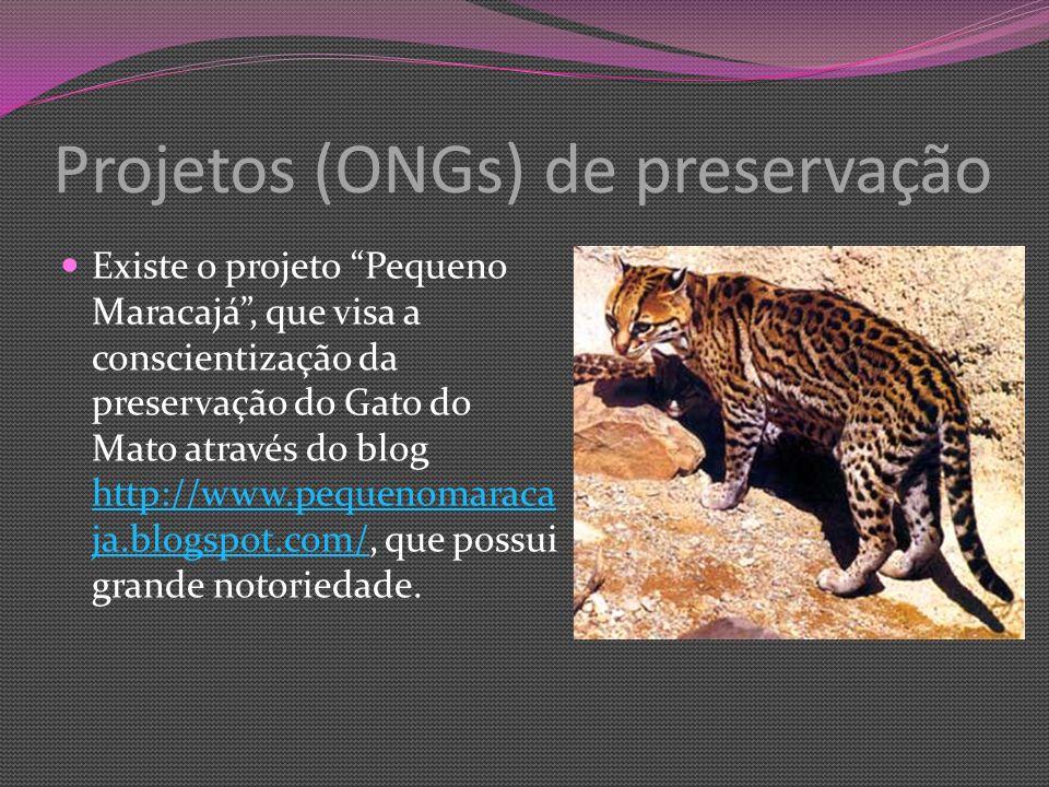 Projetos (ONGs) de preservação