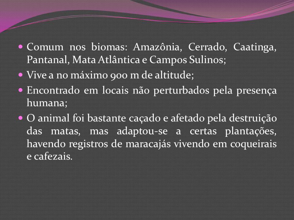 Comum nos biomas: Amazônia, Cerrado, Caatinga, Pantanal, Mata Atlântica e Campos Sulinos;