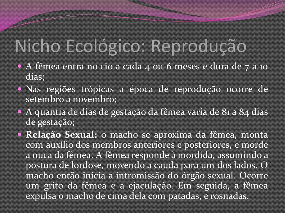 Nicho Ecológico: Reprodução