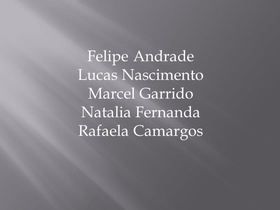 Felipe Andrade Lucas Nascimento Marcel Garrido Natalia Fernanda Rafaela Camargos