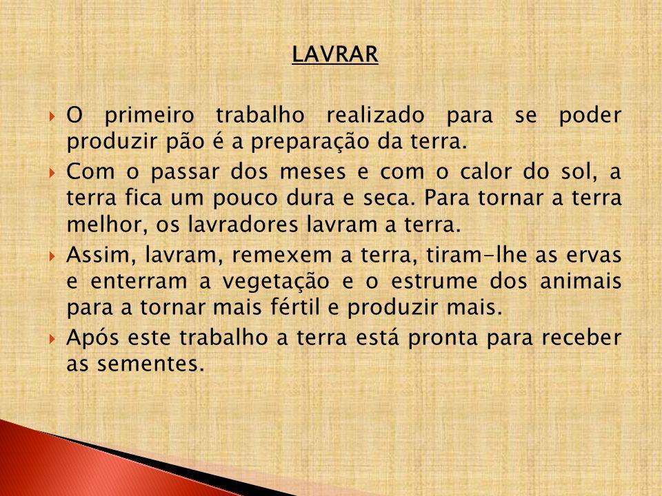 LAVRAR O primeiro trabalho realizado para se poder produzir pão é a preparação da terra.