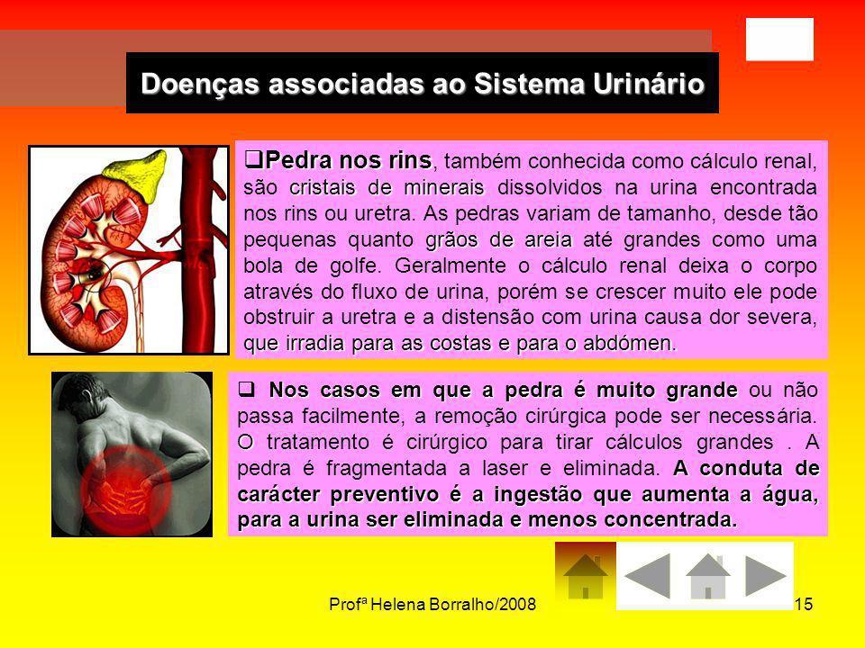 Doenças associadas ao Sistema Urinário