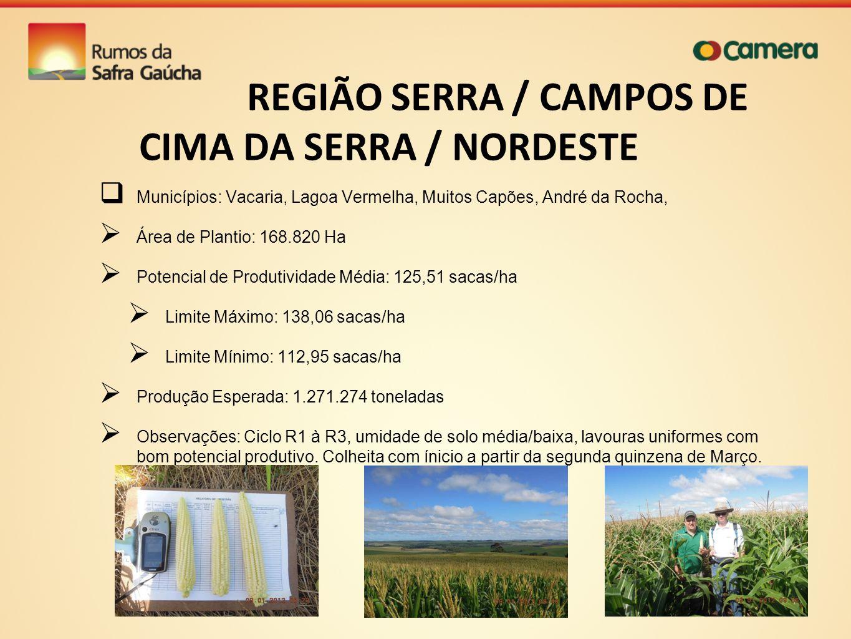 REGIÃO SERRA / CAMPOS DE CIMA DA SERRA / NORDESTE