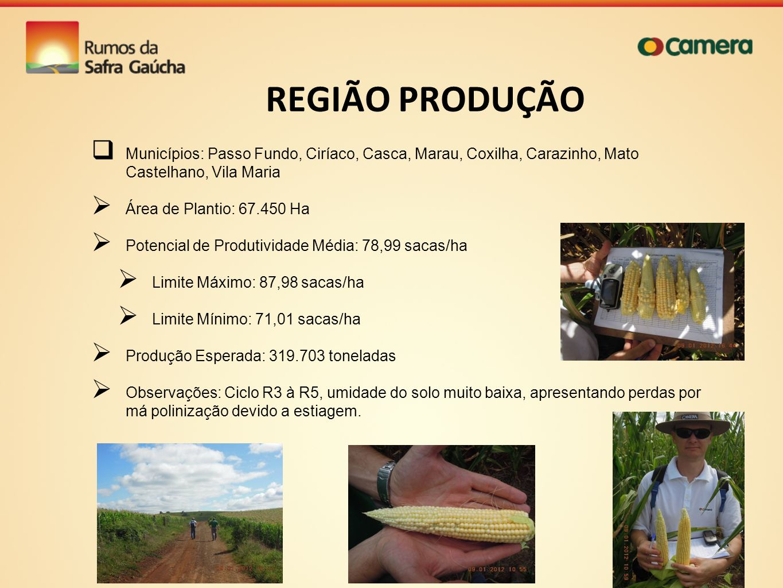 REGIÃO PRODUÇÃO Municípios: Passo Fundo, Ciríaco, Casca, Marau, Coxilha, Carazinho, Mato Castelhano, Vila Maria.