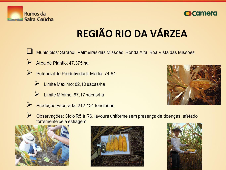 REGIÃO RIO DA VÁRZEA Municípios: Sarandi, Palmeiras das Missões, Ronda Alta, Boa Vista das Missões.