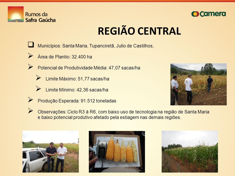 REGIÃO CENTRAL Municípios: Santa Maria, Tupanciretã, Julio de Castilhos, Área de Plantio: 32.400 ha.