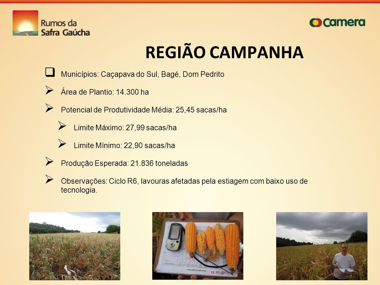 REGIÃO CAMPANHA Municípios: Caçapava do Sul, Bagé, Dom Pedrito