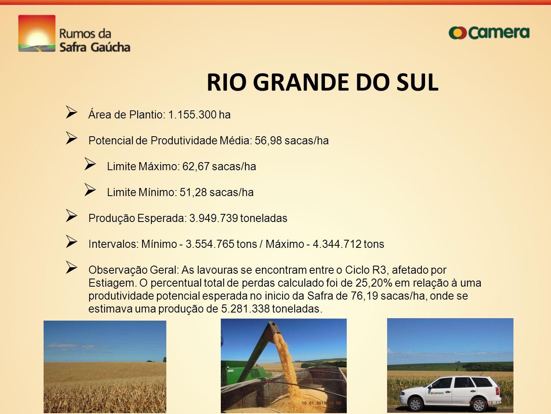 RIO GRANDE DO SUL Área de Plantio: 1.155.300 ha