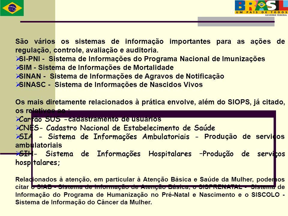 SI-PNI - Sistema de Informações do Programa Nacional de Imunizações