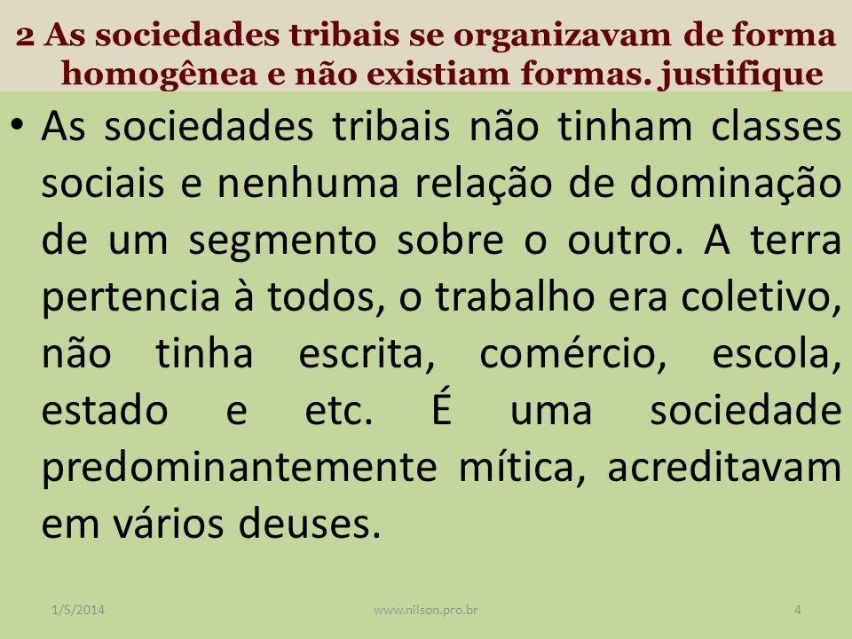 2 As sociedades tribais se organizavam de forma homogênea e não existiam formas. justifique