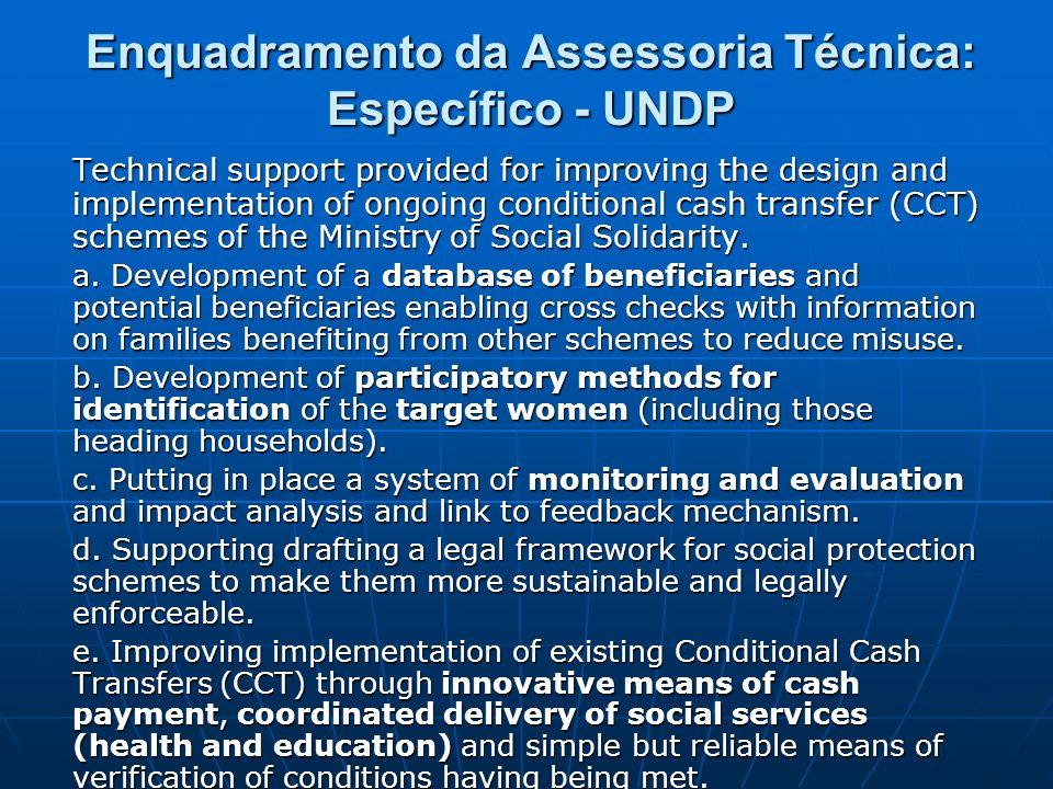 Enquadramento da Assessoria Técnica: Específico - UNDP