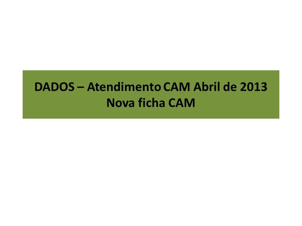 DADOS – Atendimento CAM Abril de 2013