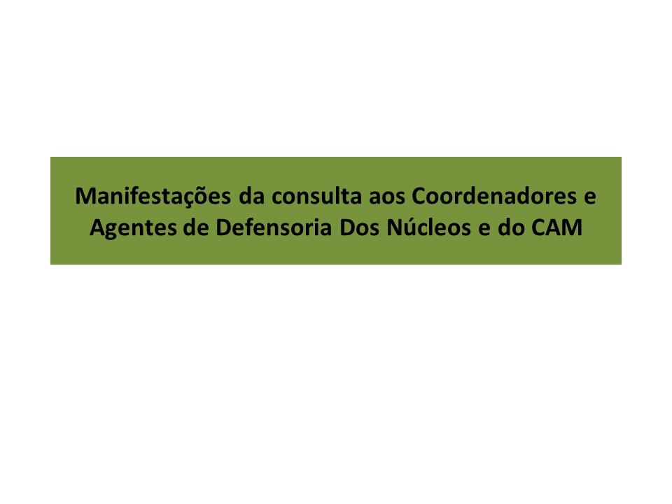 Manifestações da consulta aos Coordenadores e Agentes de Defensoria Dos Núcleos e do CAM