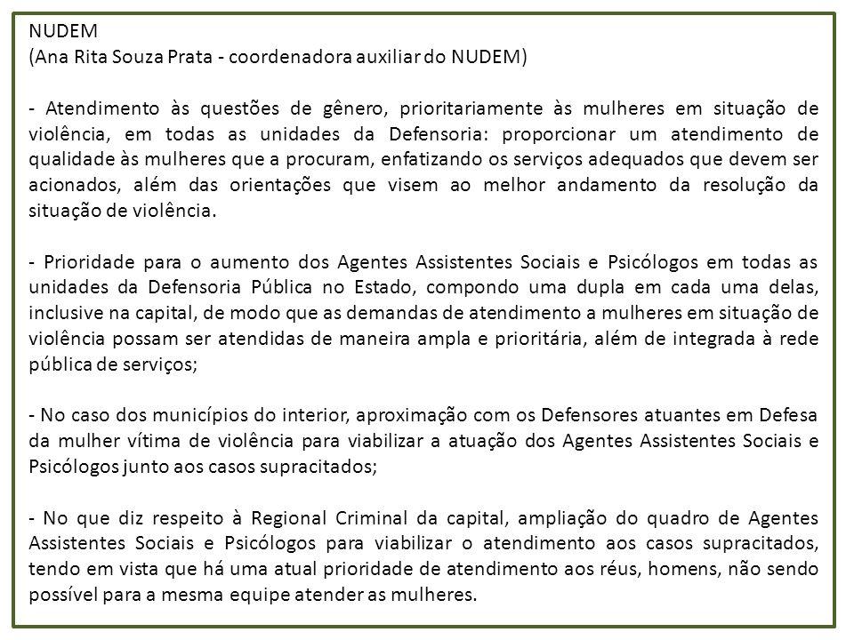 NUDEM (Ana Rita Souza Prata - coordenadora auxiliar do NUDEM)