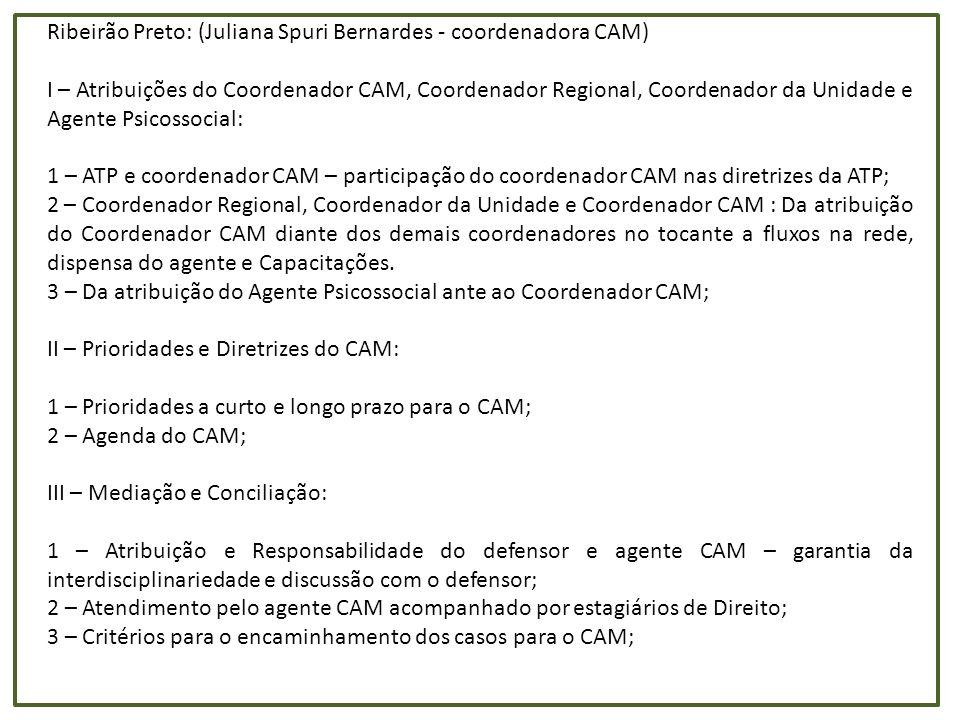 Ribeirão Preto: (Juliana Spuri Bernardes - coordenadora CAM)