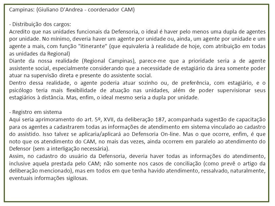 Campinas: (Giuliano D Andrea - coordenador CAM)