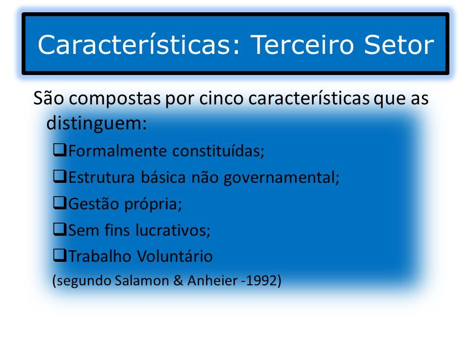 Características: Terceiro Setor