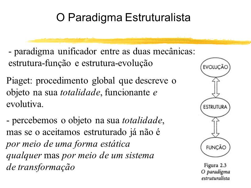 O Paradigma Estruturalista