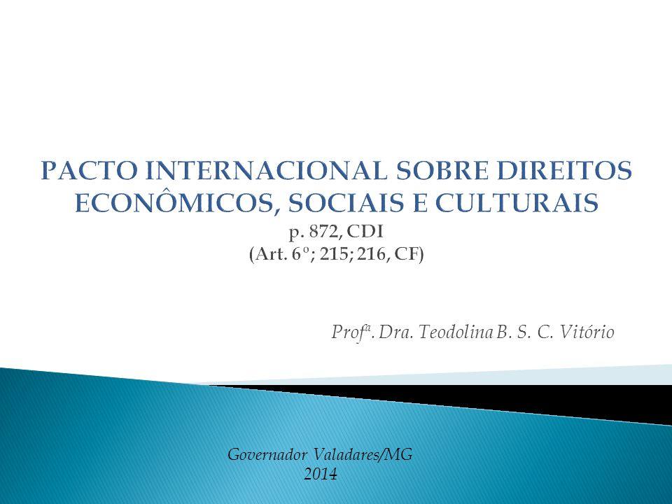 Profª. Dra. Teodolina B. S. C. Vitório