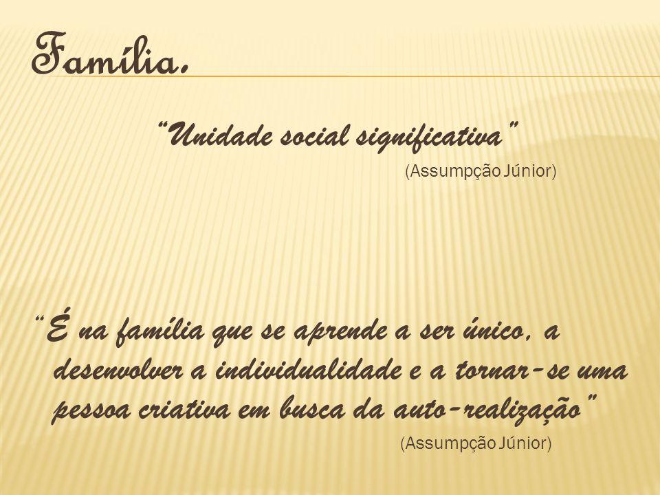 Unidade social significativa