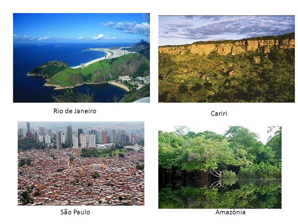 Rio de Janeiro Cariri São Paulo Amazônia