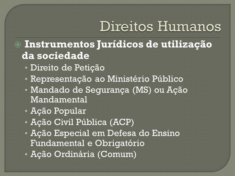 Direitos Humanos Instrumentos Jurídicos de utilização da sociedade