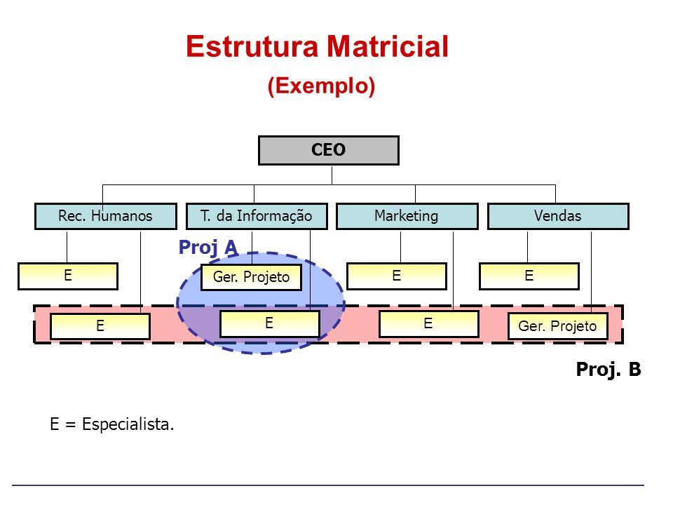 Estrutura Matricial (Exemplo)
