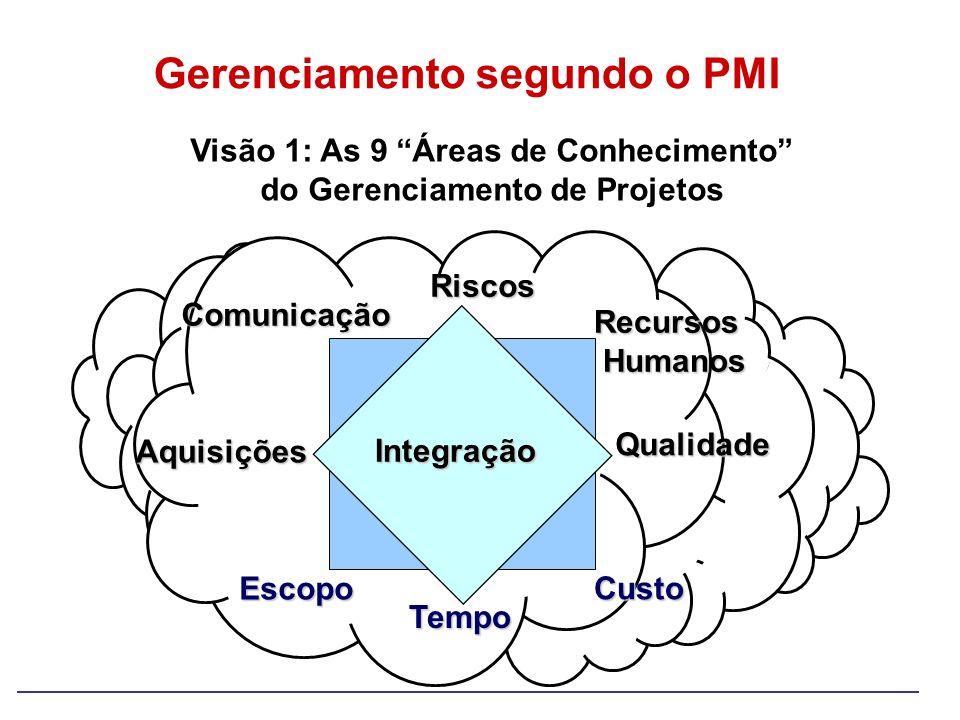 Gerenciamento segundo o PMI