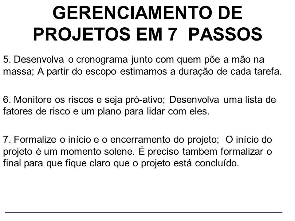 GERENCIAMENTO DE PROJETOS EM 7 PASSOS