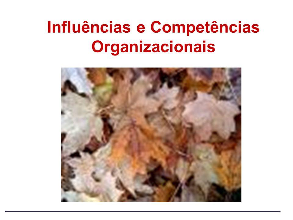 Influências e Competências Organizacionais