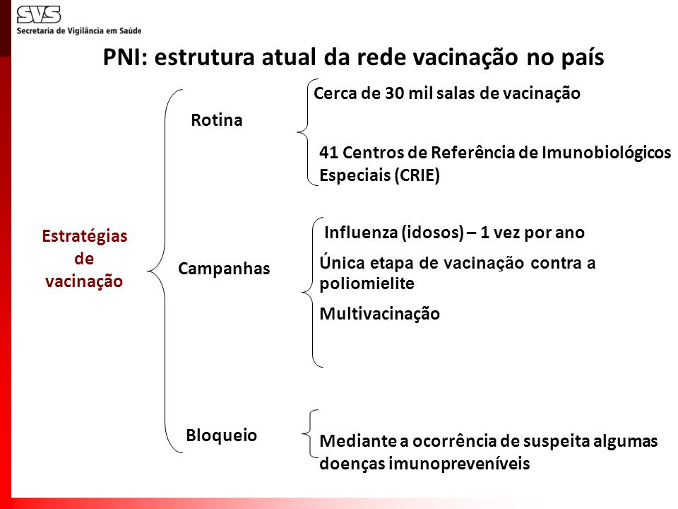 PNI: estrutura atual da rede vacinação no país